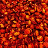 Chestnuts by VIDEO HEAD CLEANER (Digital) 2