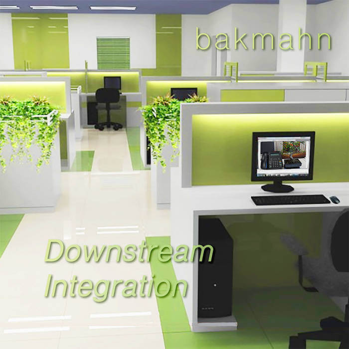 Downstream Integration by bakmahn (Cassette) 12