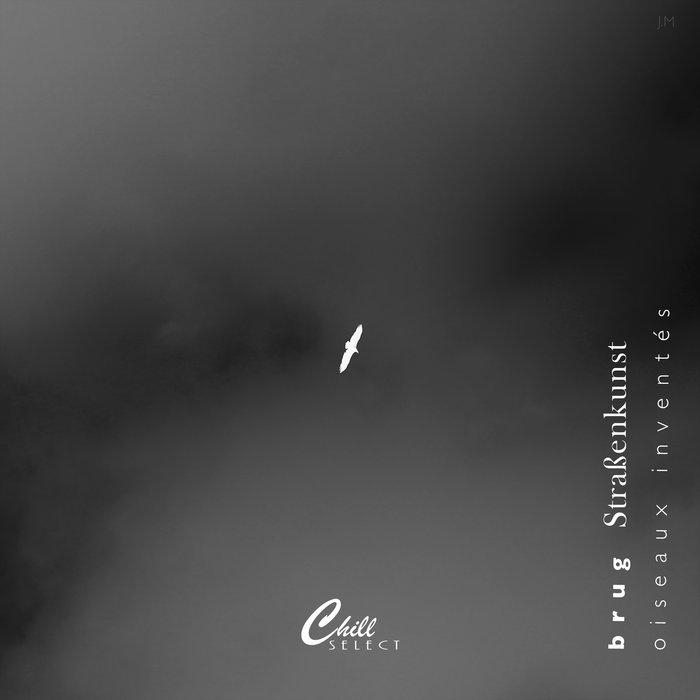 oiseaux inventés by Chill Select / Brug (Cassette) 4