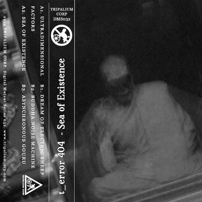 DMS032 - t_error 404 - Sea of Existence by t_error 404 (Cassette) 12