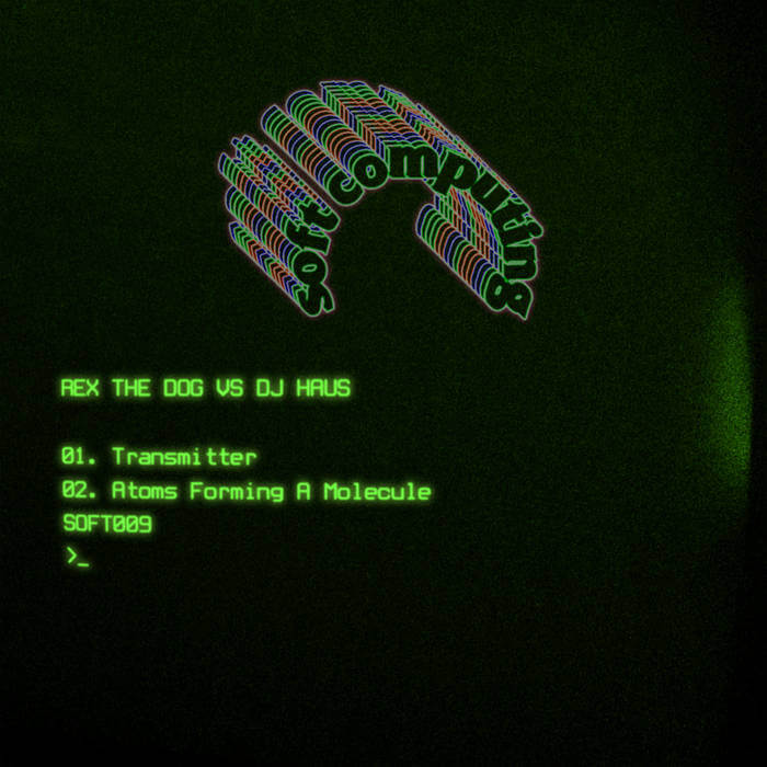 Transmitter / Atoms Forming A Molecule by Rex The Dog Vs DJ Haus (Digital) 11