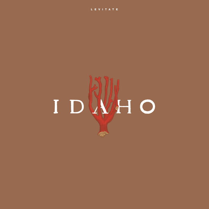 Levitate by Idaho (Vinyl) 4
