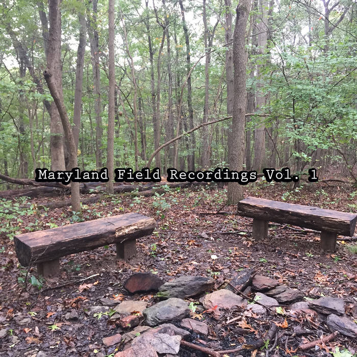 Maryland Field Recordings Vol. 1 by Stema (Physical) 4