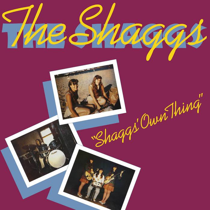 Shaggs' Own Thing by The Shaggs (Digital) 12