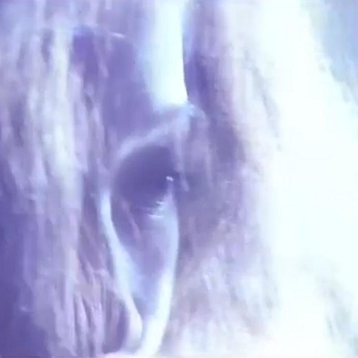 明るい目 by コンピュータの風 (Digital) 2