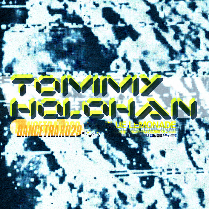 Dance Trax Vol​.​29 by Tommy Holohan (Vinyl) 12
