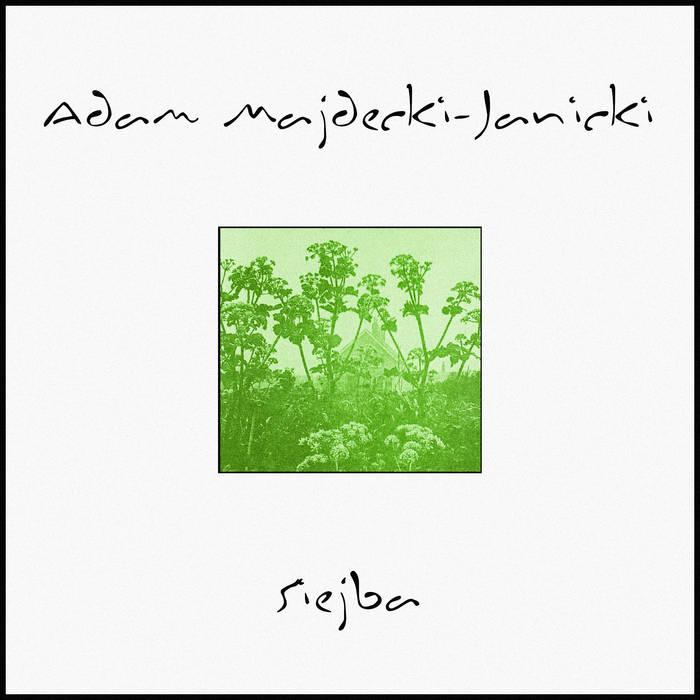 Siejba by Adam Majdecki-Janicki (Digital) 12