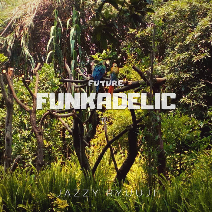 Future Funkadelic IV by Jazzy Ryuuji (Digital) 10