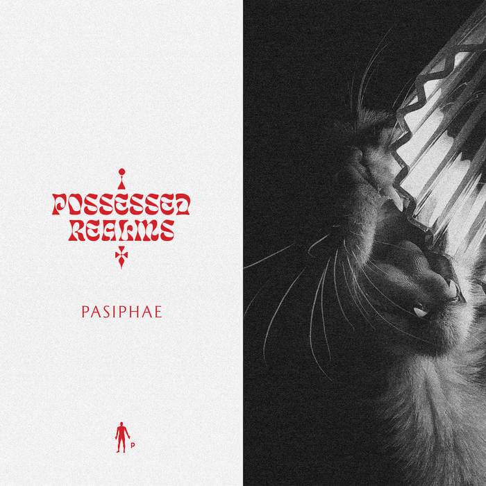 Possessed Realms by Pasiphae (Vinyl) 3