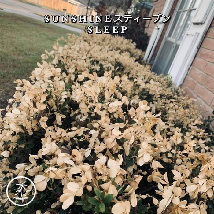 S L E E P - S U N S H I N E スティーブン (Cassette) 5